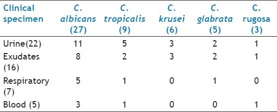 Table 1: Distribution of <i>Candida</i> in different clinical specimens